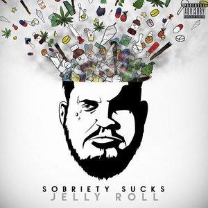 Image for 'Sobriety Sucks'