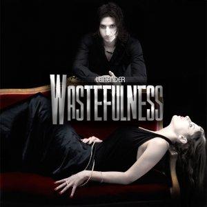 Bild für 'Wastefulness (Radio Edit)'