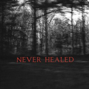 Image for 'Never Healed'