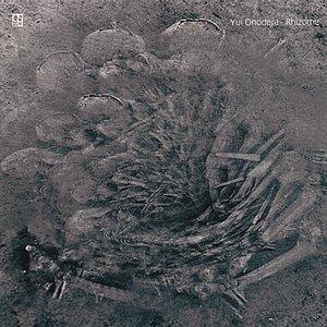 Image for 'Rhizome 1'