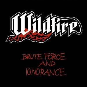 Image for 'Brute Force and Ignorance'
