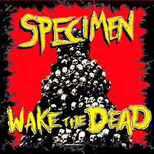 Image for 'Wake The Dead'
