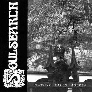Imagem de 'Nature Falls Asleep'