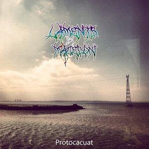 Image for 'Protocacuat'