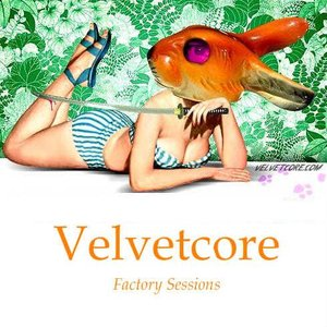 Image for 'Factory Sessions'