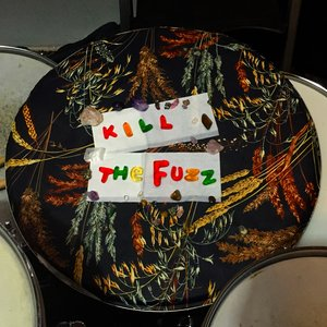 Image for 'Kill The Fuzz'