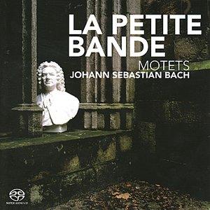 Image for 'Jesu, Meine Freude, BWV 227: So aber Christus in euch ist (Andante)'
