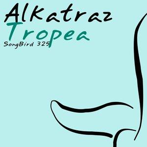 Image for 'Tropea'