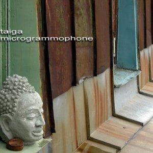 Image for 'Microgrammophone (Live @ Lig56) 2007'