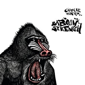 Immagine per 'Baboon Strength'