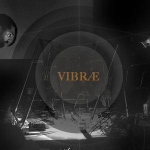 Image for 'VIBRÆ'