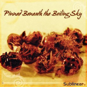 Image pour 'Pinned Beneath the Boiling Sky'