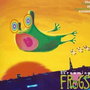 Image for 'The frogs at beautiful sunset'