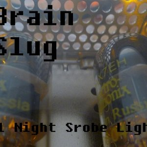 Image for 'All Night Strobe Light'