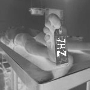 Image for '7hz'