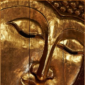 Image for 'Marco Buddha'