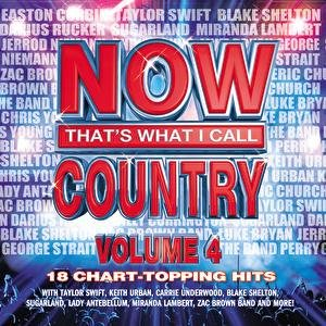 Imagen de 'Now That's What I Call Country, Volume 4'