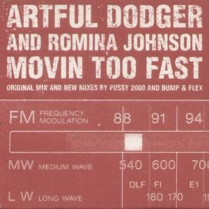 Image for 'Artful Dodger and Romina Johnson'