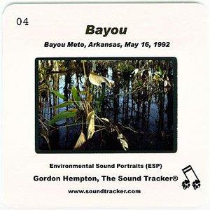 Immagine per 'Bayou (Bayou Meto, Arkansas, May 16, 1992)'