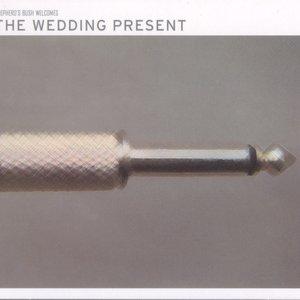 Image for 'Shepherd's Bush Welcomes The Wedding Present'