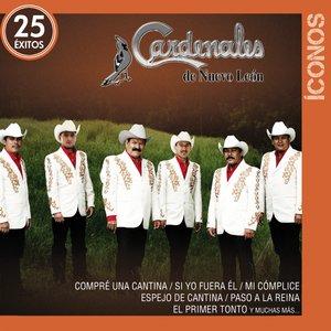 Image for 'Íconos 25 Éxitos'