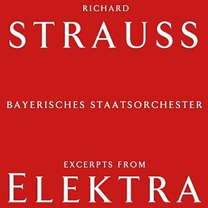 Image for 'Excerpts From Elektra'