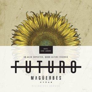Image for 'Futuro'