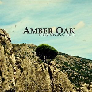 Image for 'Amber Oak/Your missing piece'