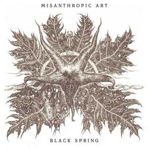 Image for 'Black Spring'