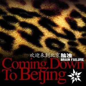 Immagine per 'coming down to beijing'