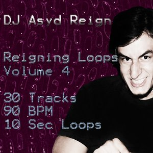 Image for 'Reigning Loops, Vol. 4'