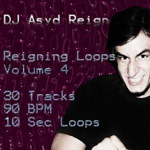 Bild för 'Reigning Loops, Vol. 4'
