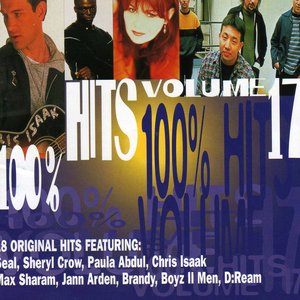Image for '100% Hits, Volume 17'