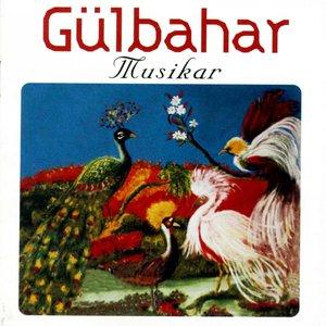 Image for 'Musikar'