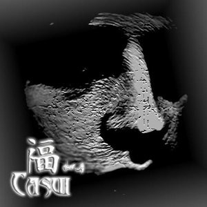 Image for 'Casui'
