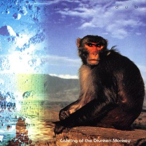 Image pour 'Calming of the Drunken Monkey'