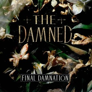 Image for 'Final Damnation'