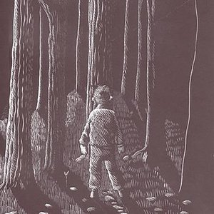 Image for 'Drive To Nowhere: Verity's Novel'