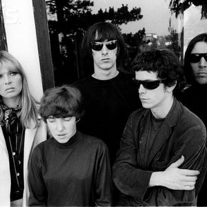 Immagine per 'The Velvet Underground'