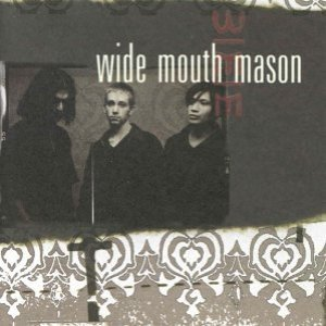 Image for 'Wide Mouth Mason'