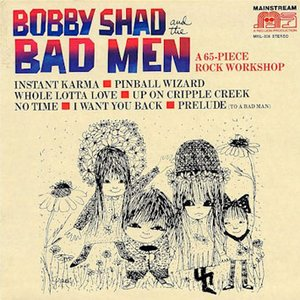 Image for 'Bobby Shad and the Bad Men'