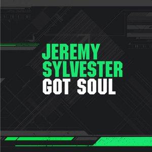 Image for 'Got Soul'