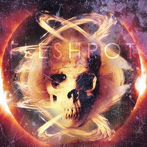 Image for 'Fleshwrought'