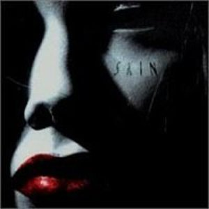 Image for 'Skin'