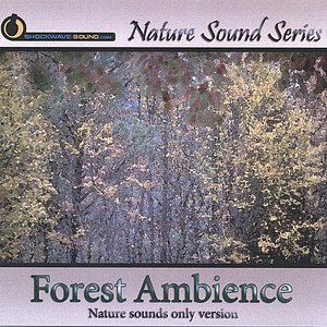 Image for 'Forest Ambience (Nature sounds only version)'