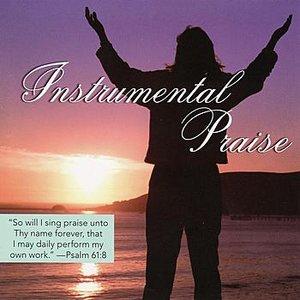 Image for 'Instrumental Praise'