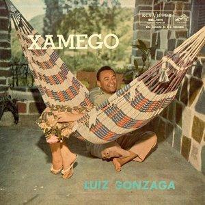 Image for 'O Xamêgo Da Guiomar'