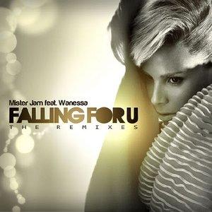 Bild für 'Falling For U Remixes'