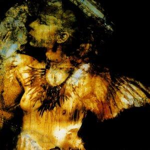 Bild för '最後は天使と聴く沈む世界の翅の記憶'