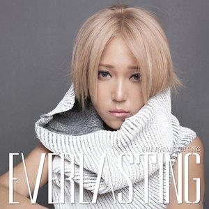 Image for 'Everlasting'